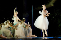 Ballet pertormance at Maynardville [1001174912]
