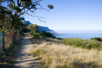 Hiking Table Mountain's Pipe Track trail [1001235575]