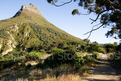 lions head,hiking,pipe track,mountains