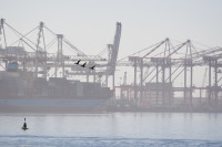 Cranes at Table Bay Harbour [1001235663]