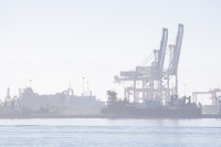 Cranes at Table Bay Harbour [1001235668]
