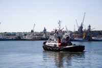 Tugboat in Table Bay Harbour [1001235822]