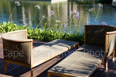 furniture,rivers,agapanthus