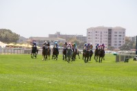 Horse racing at Kenilworth race track [1101290869]