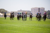 Horse racing at Kenilworth race track [1101290871]