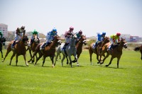Horse racing at Kenilworth race track [1101290874]