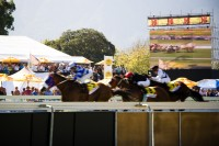 Horse racing at Kenilworth race track [1101291012]