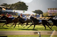 Horse racing at Kenilworth racing track [1101291039]