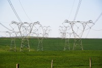 Electicity pylons on a green field [1106107338]