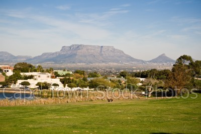 table mountain,houses,park,plattekloof