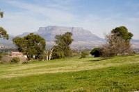 Table Mountain and a green park [1106167346]
