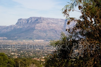 mountain,table mountain,devil's peak