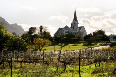 vineyard,buildings,churches