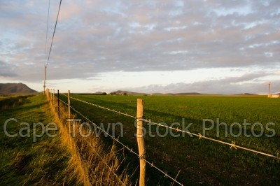 landscape,countryside,fields