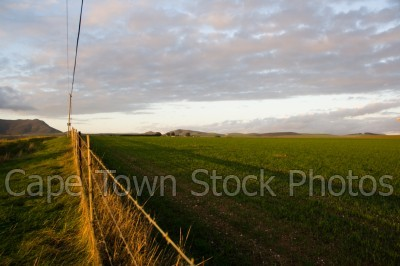 landscape,country,fields