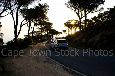 trees,car,sunset,clifton,silhouette,roads