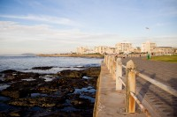 Railing of the Sea Point promenade [1111191613]