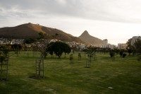 Signal Hill from Green Point Park and Biodiversity Garden [1111191722]