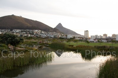signal hill,reflection,lions head,dam,gardens,buildings