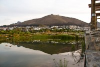 Dam at Green Point Park and Biodiversity Garden [1111191792]