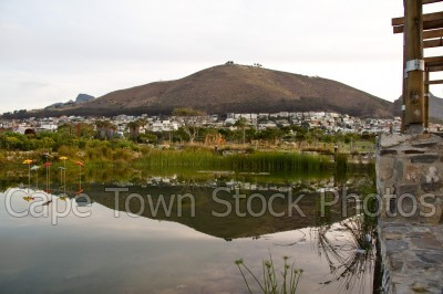 signal hill,reflection,dam,gardens