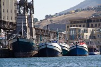 Fishing boats at the V&A Waterfront [1112263779]