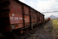 Cargo train carriage [1201215057]
