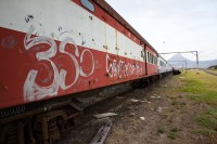 Train with graffiti [1201215123]