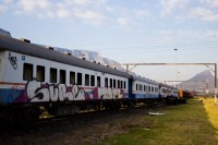 Train with graffiti [1201215178]