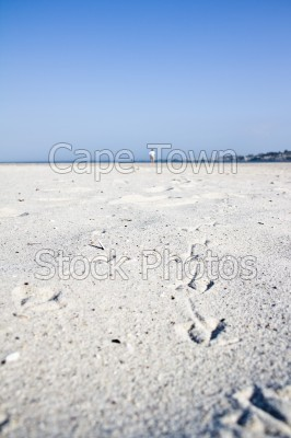 bird,blue sky,beach,people,camps bay,footprints