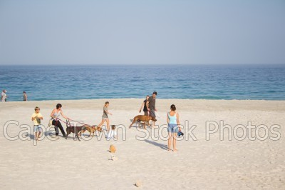 beach,people,camps bay,dogs