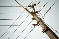 Telephone pole and wires [1202055631]