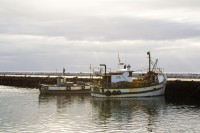 Fishing boats at Kalk Bay harbour [1203046080]