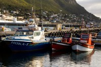 Fishing boats at Kalk Bay harbour [1203046085]