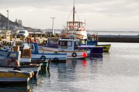 Fishing boats at Kalk Bay harbour [1203046086]