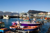 Colourful boats of Kalk Bay [1203046113]