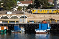Trains and boats in Kalk Bay [1203046185]