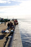 Fishing from the pier in Kalk Bay [1203046216]