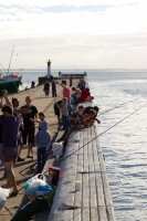 Fishing from the pier in Kalk Bay [1203046217]