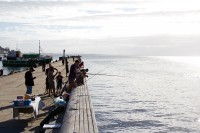 Fishing from the pier in Kalk Bay [1203046228]