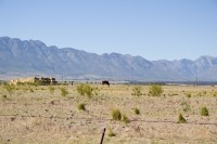 Blue Witzenberg mountains near Tulbagh [1204117281]