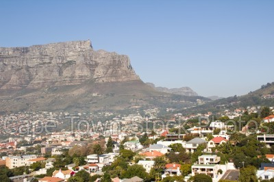table mountain,tamboerskloof