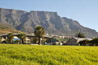 Table mountain and residential houses [1208189451]