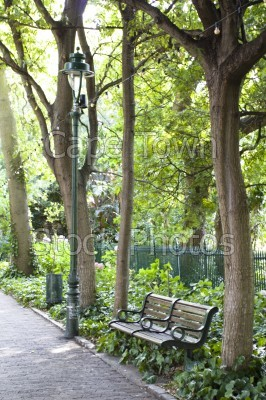 trees,company's gardens,benches,greenery,lamp post