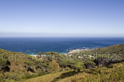 sea,fynbos,camps bay,atlantic ocean