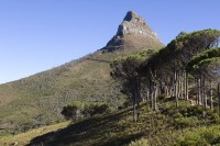 Signal hill from the Pipe Track trail [1301274240]