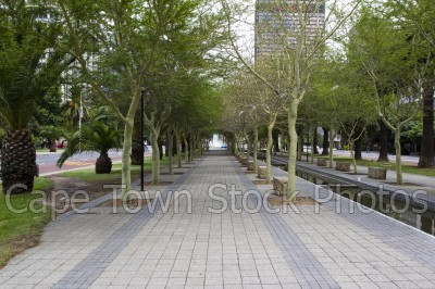 city,trees,canal