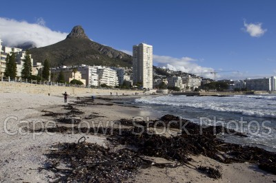 sea,beach,lions head,sea point