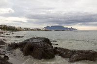 Seaweed and Table Mountain from Big Bay [1303314861]