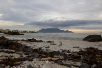 Table Mountain from Big Bay [1303314877]